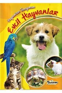 Teleskop Popüler Bilim - Hayvanları Tanıyorum - Evcil Hayvanlar - Teleskop Popüler Bilim
