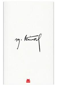 Kırmızı Kedi - Mustafa Kemal